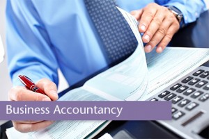 professional-accountants